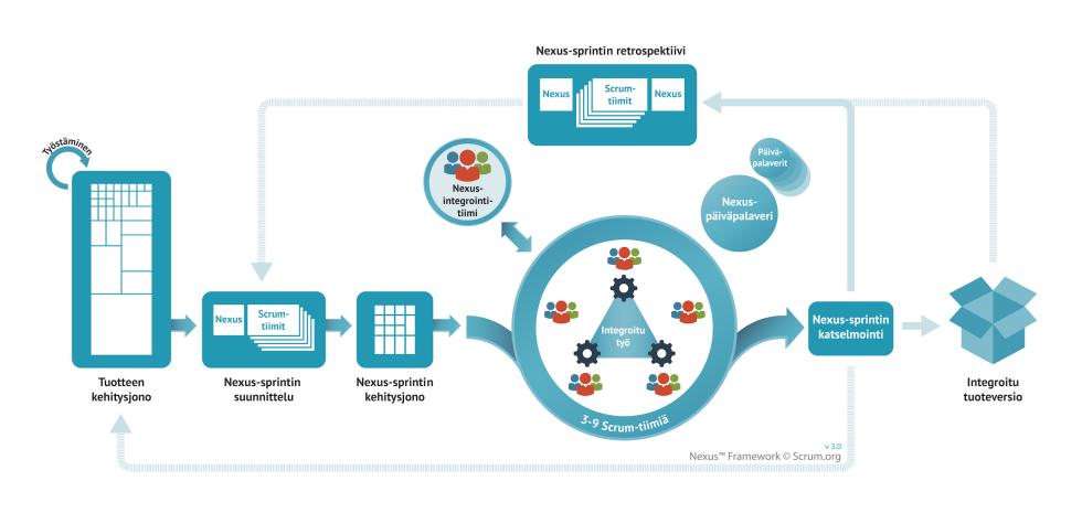Nexus Framework v3 - border1